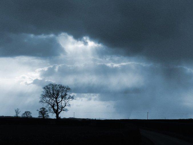 dark_sky-1831
